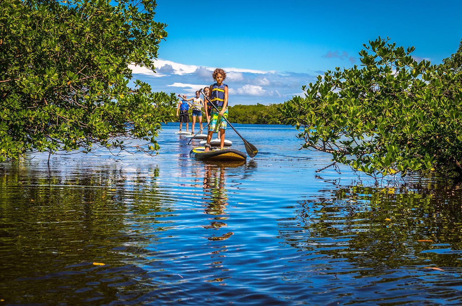 A family kayaks around the tropical plants on the banks on Sanibel Island.