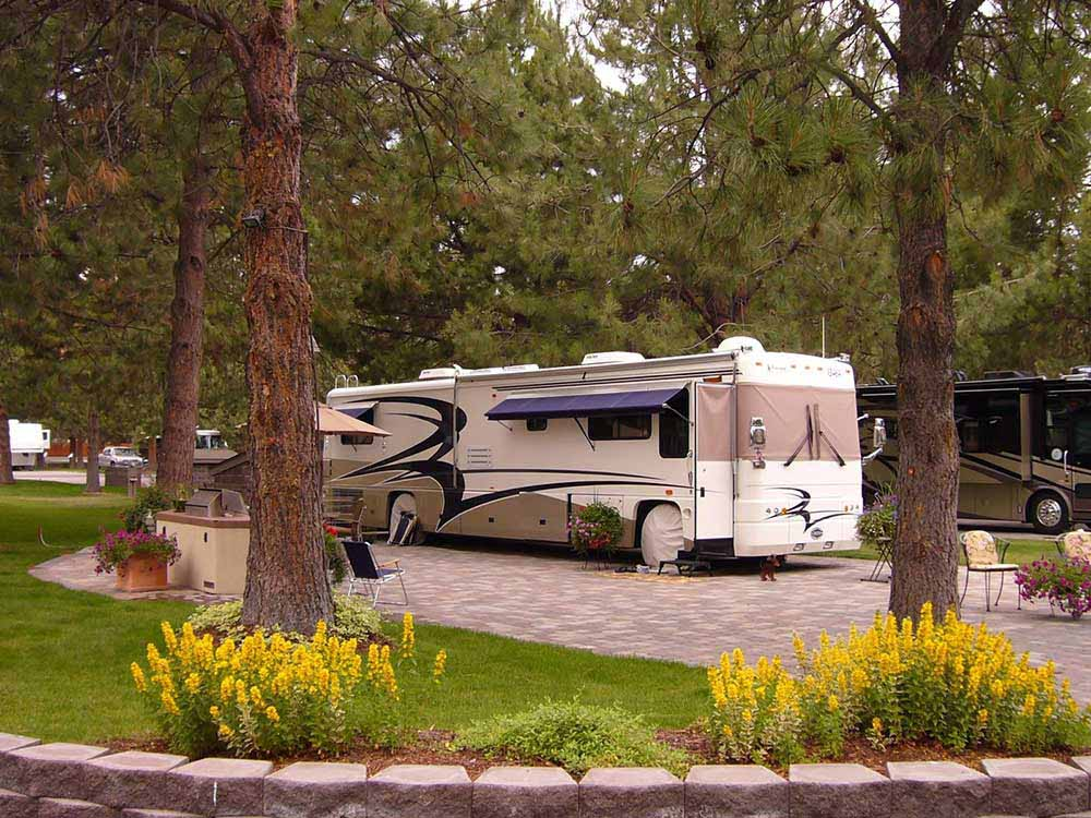 A motorhome sits on a spacious brick site under tall pine trees.