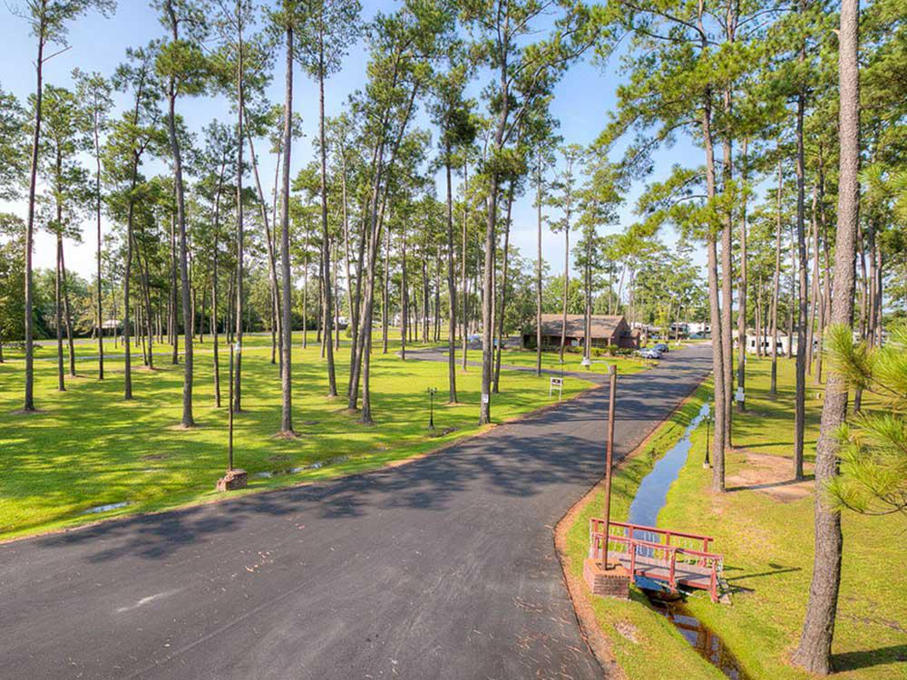 Lush RV park amid hundreds of trees.
