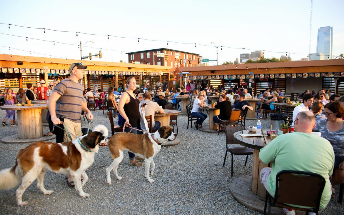 Large outdoor patio and bar with tables, people and two large dogs