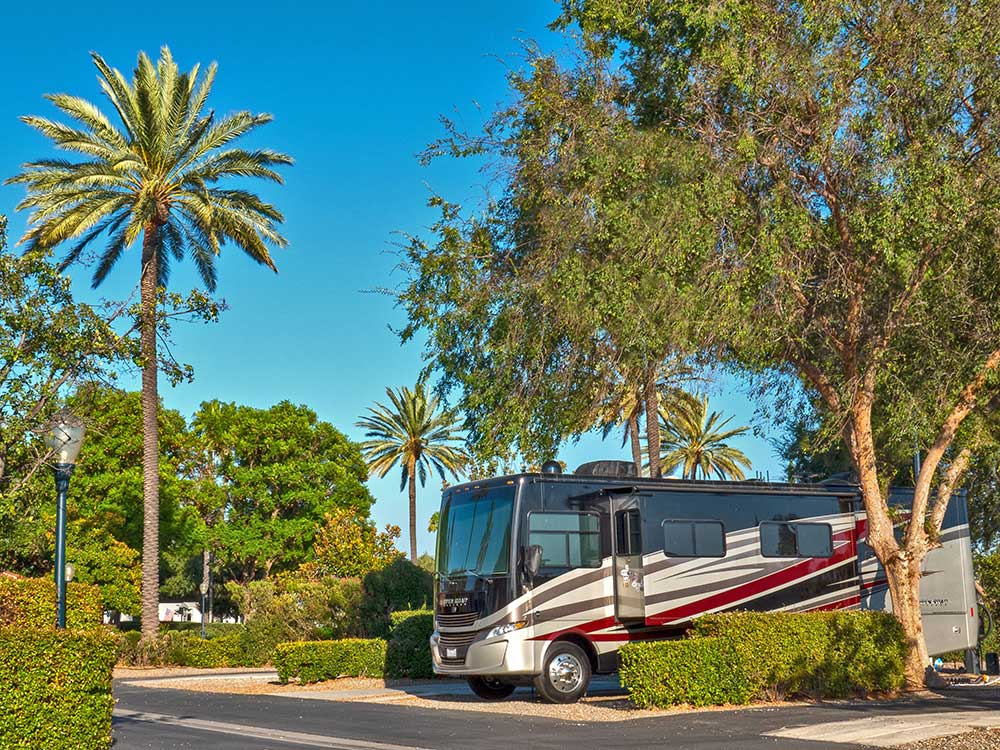 An RV site at Golden Village Palms RV Resort.