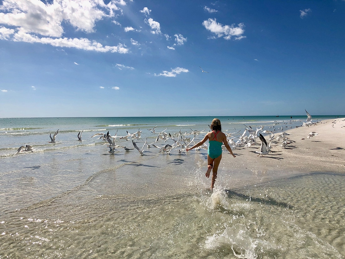 A girl runs on the beach chasing seagulls