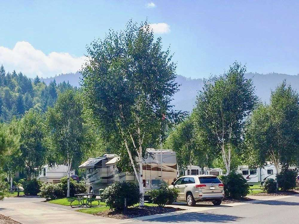 RVs parked under lush trees with mountain skyline in distance.