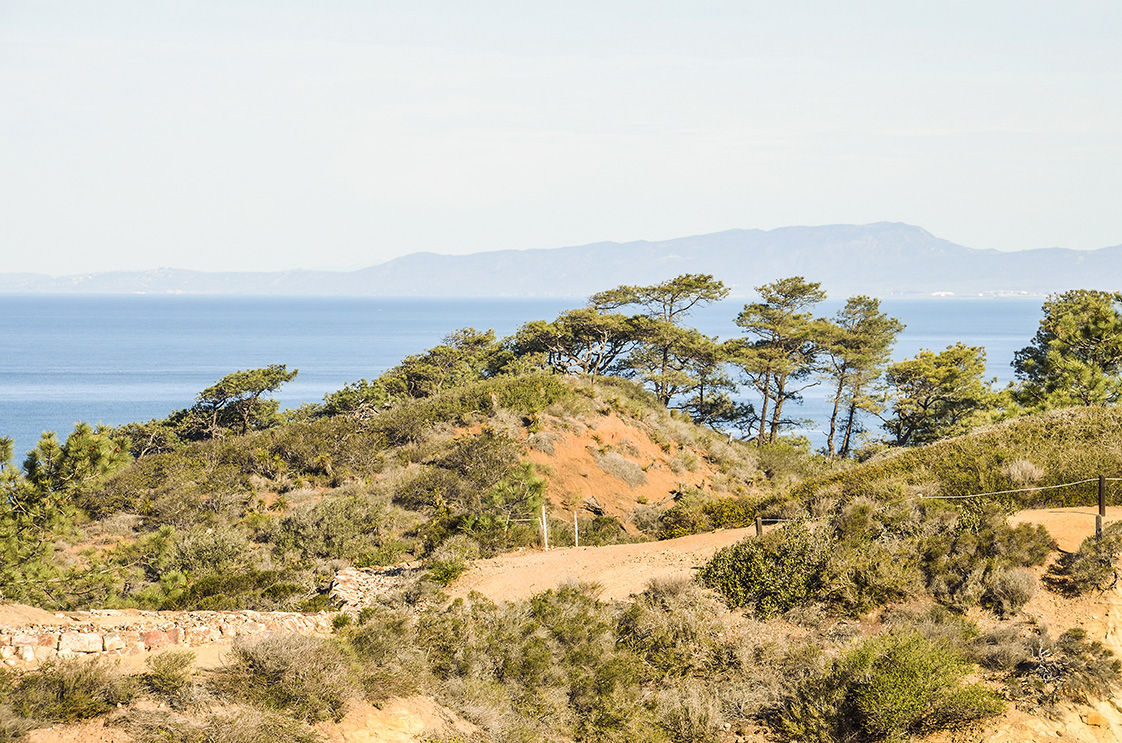 Enjoying San Diego's Natural Treasures Torrey Pines cliff in pacific ocean in San Diego California with trail