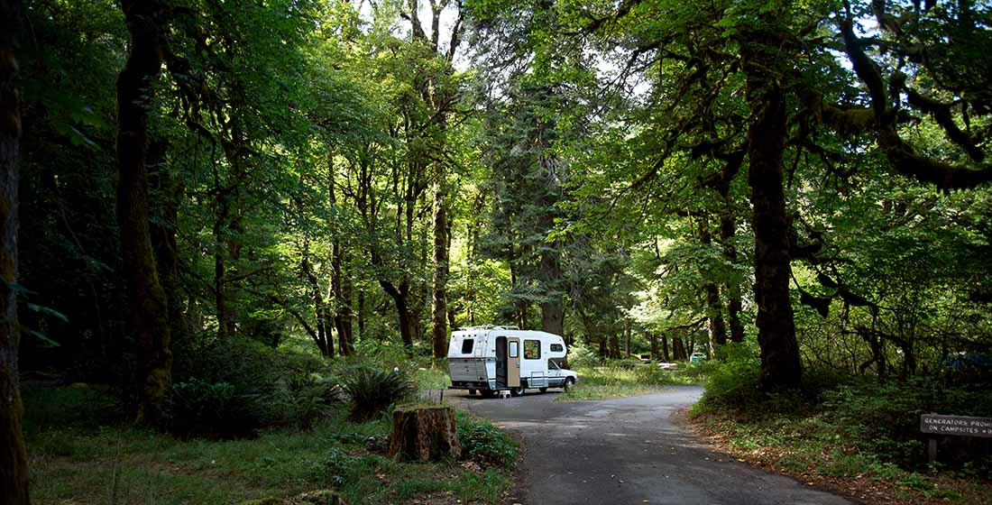 An RV parked in a forest campground, Washington state.