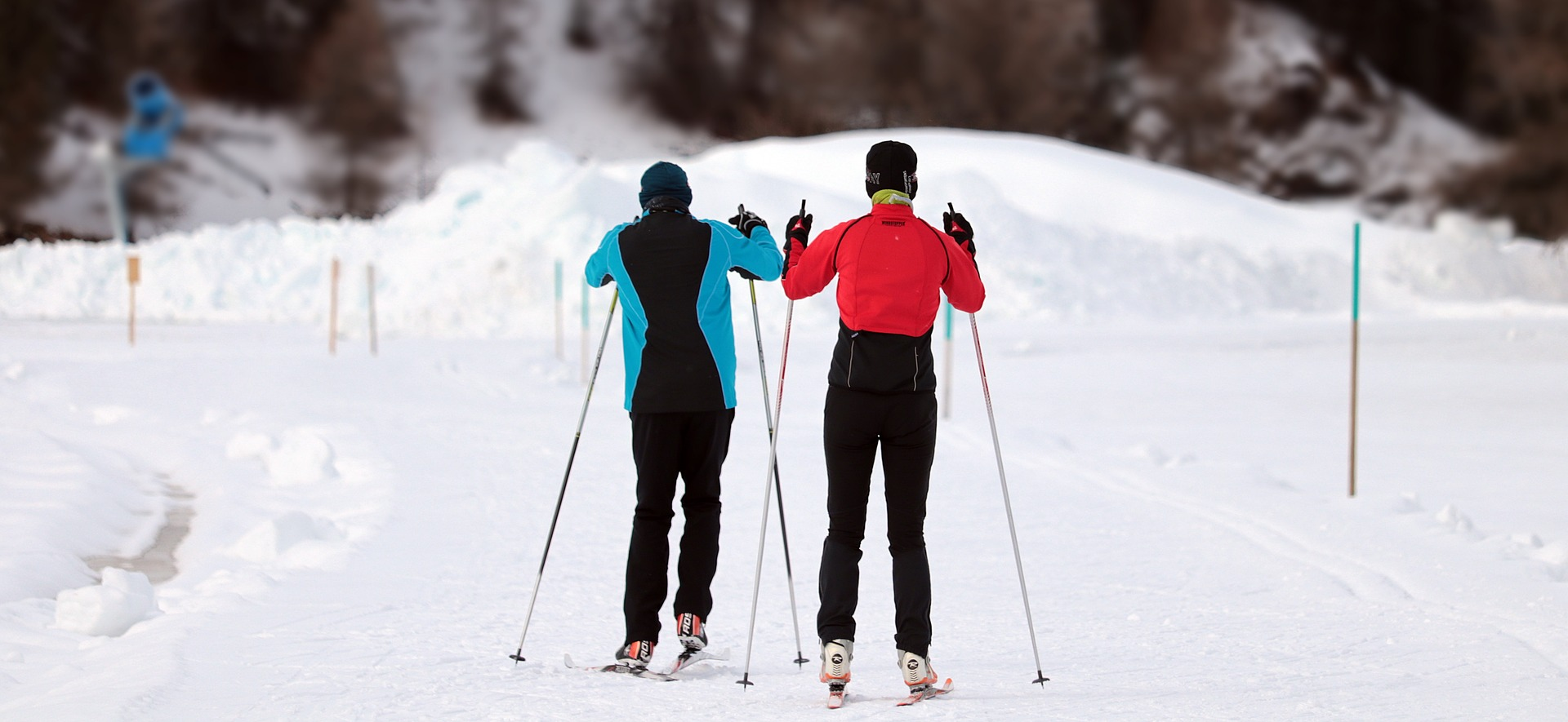 A pair of skiiers following a snowy path.