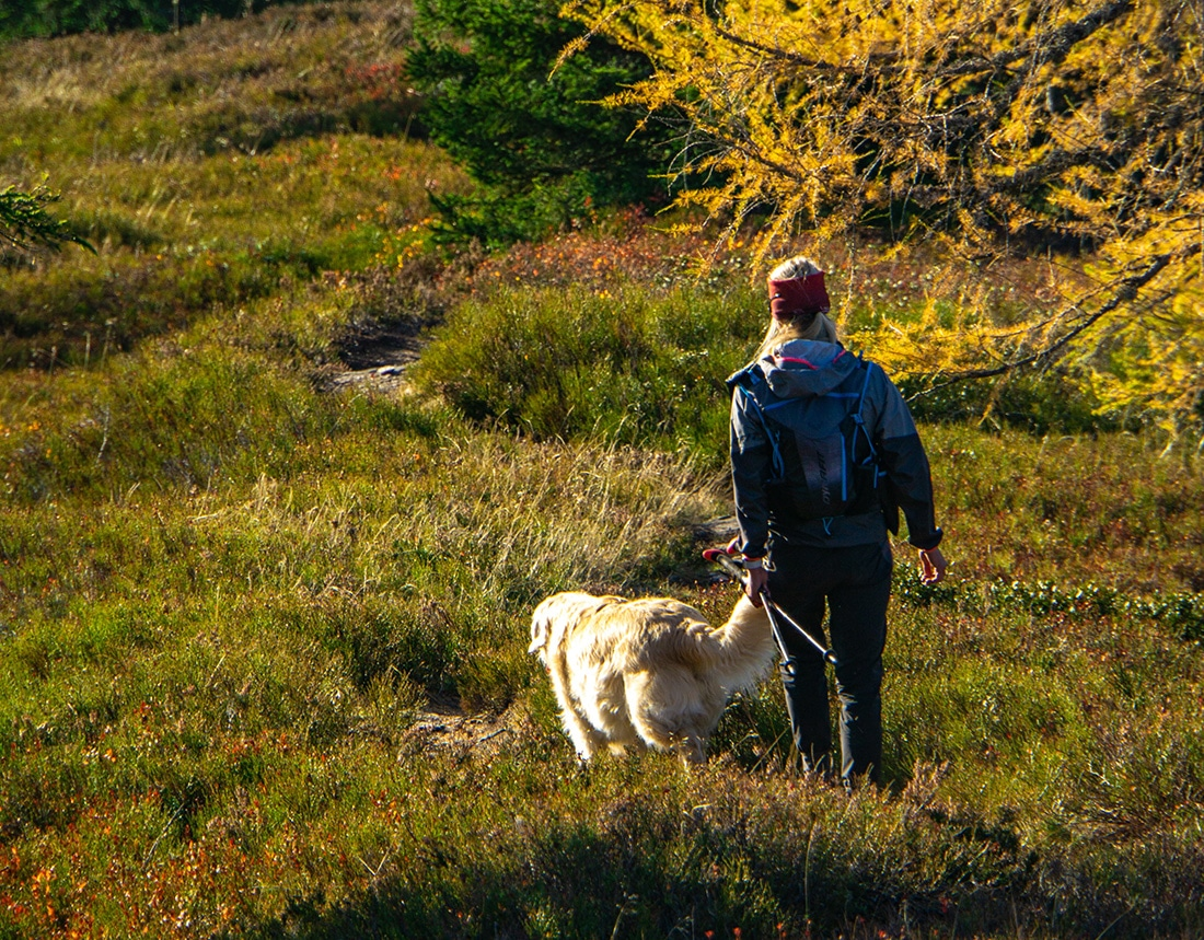 Woman hiking with her dog in grassy area