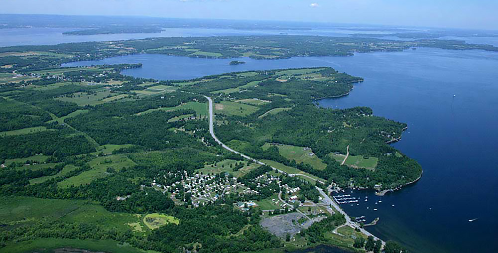 Aerial view of forested lake coastline.