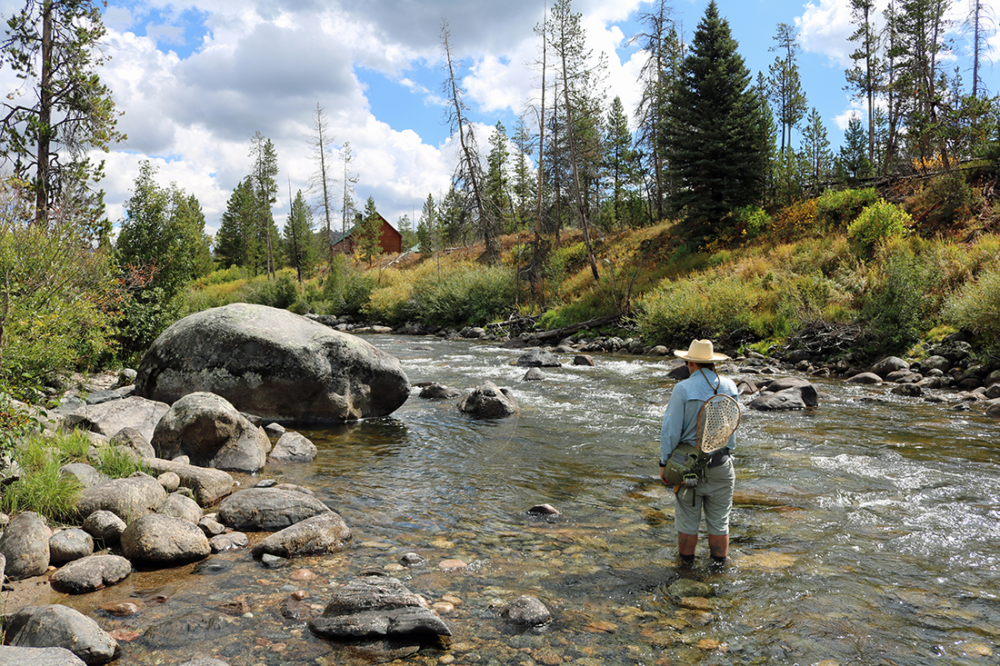 Fly fishing in a very shallow stream.