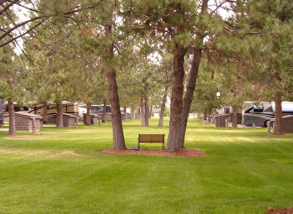 Manicured lawn at RV resort