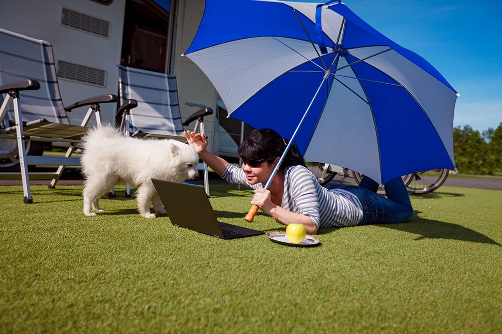 Woman on the grass with a dog looking at a laptop. Caravan car Vacation. Family vacation travel, holiday trip in motorhome VR