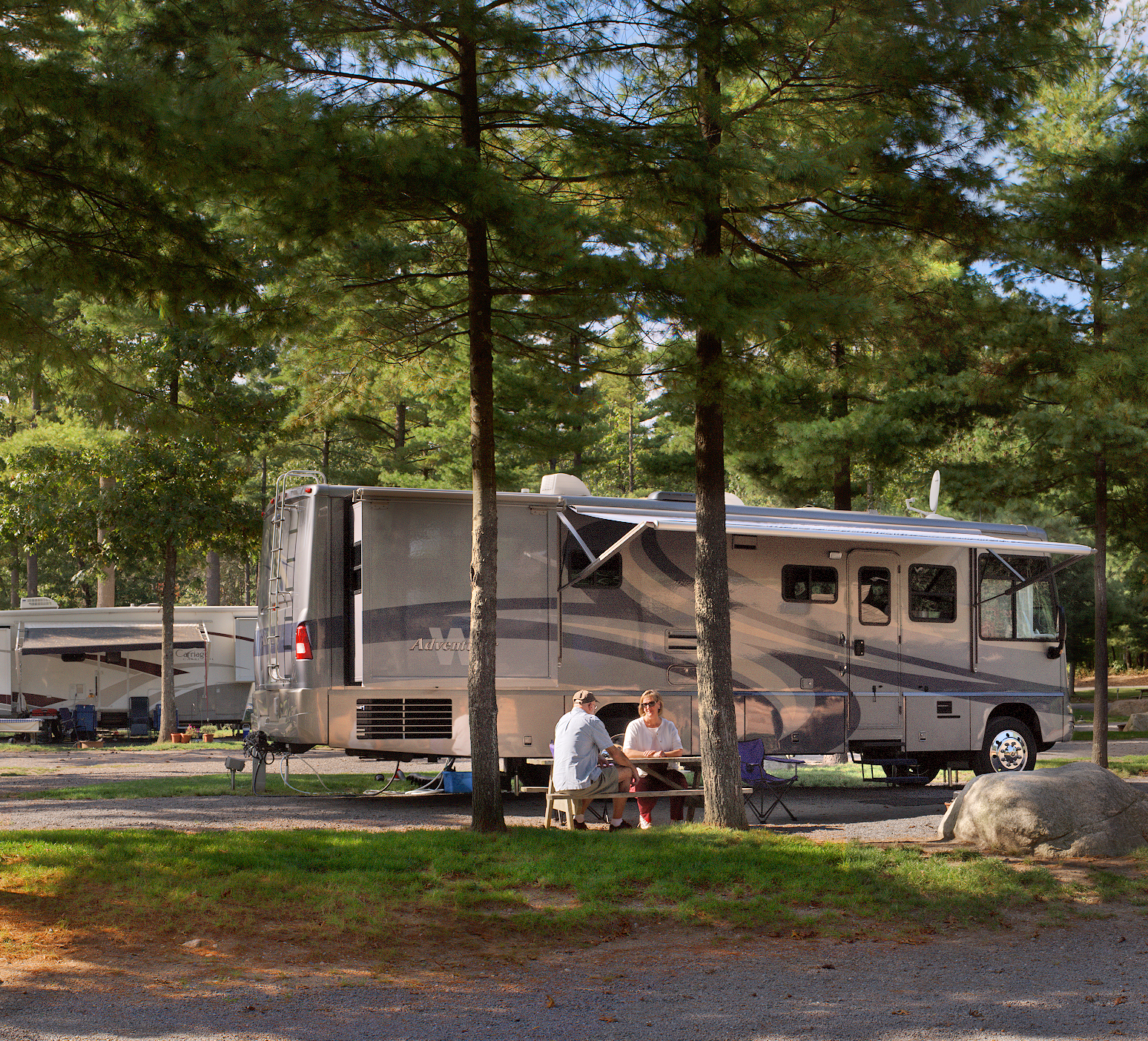 Motorhome parked under tall, shady pines.