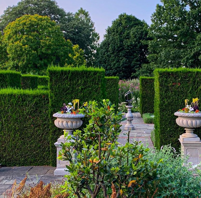 Neatly manicured hedges in a botanical garden
