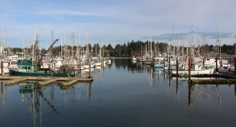 A row of docked fishing boats.