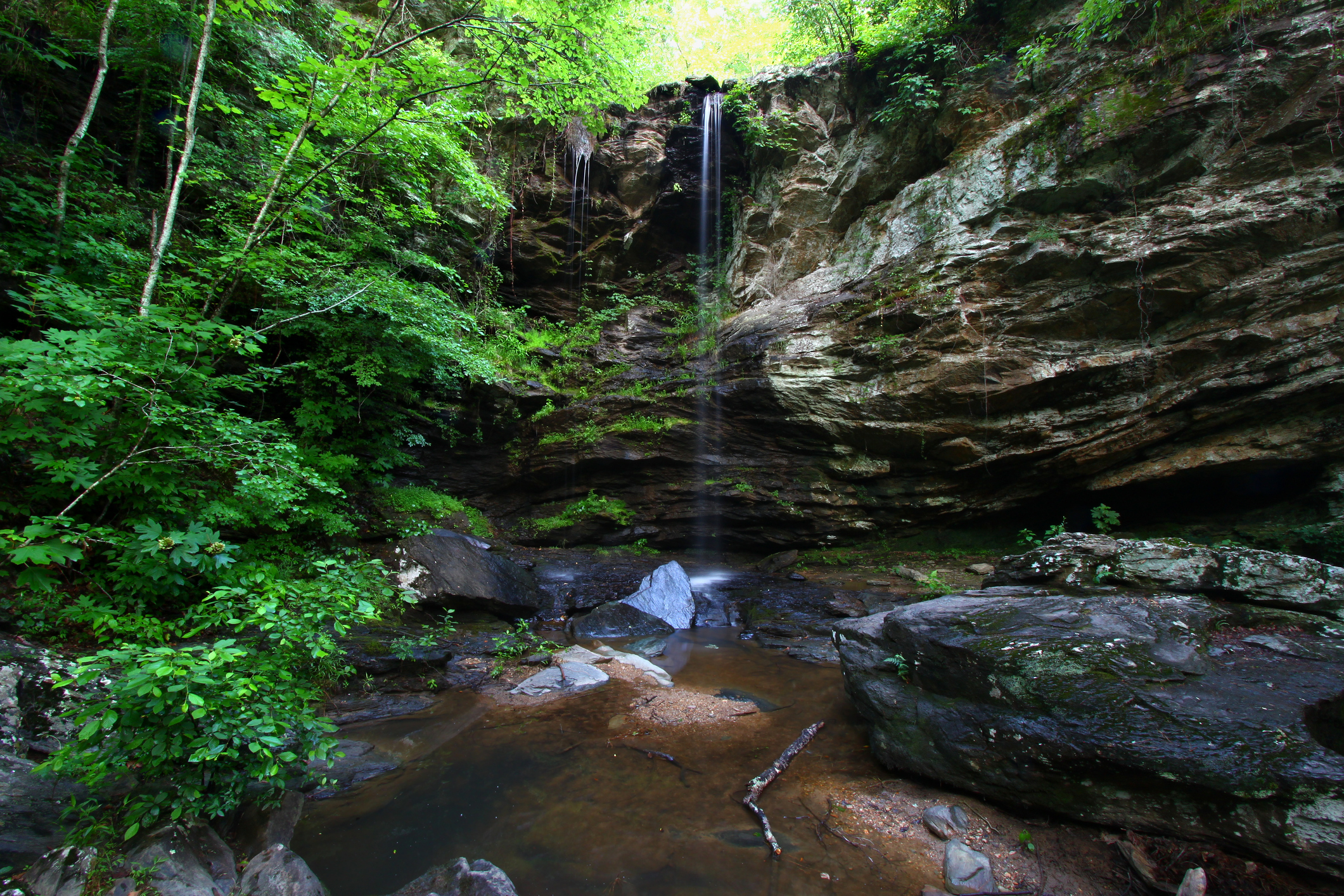 Waterfall in lush foret