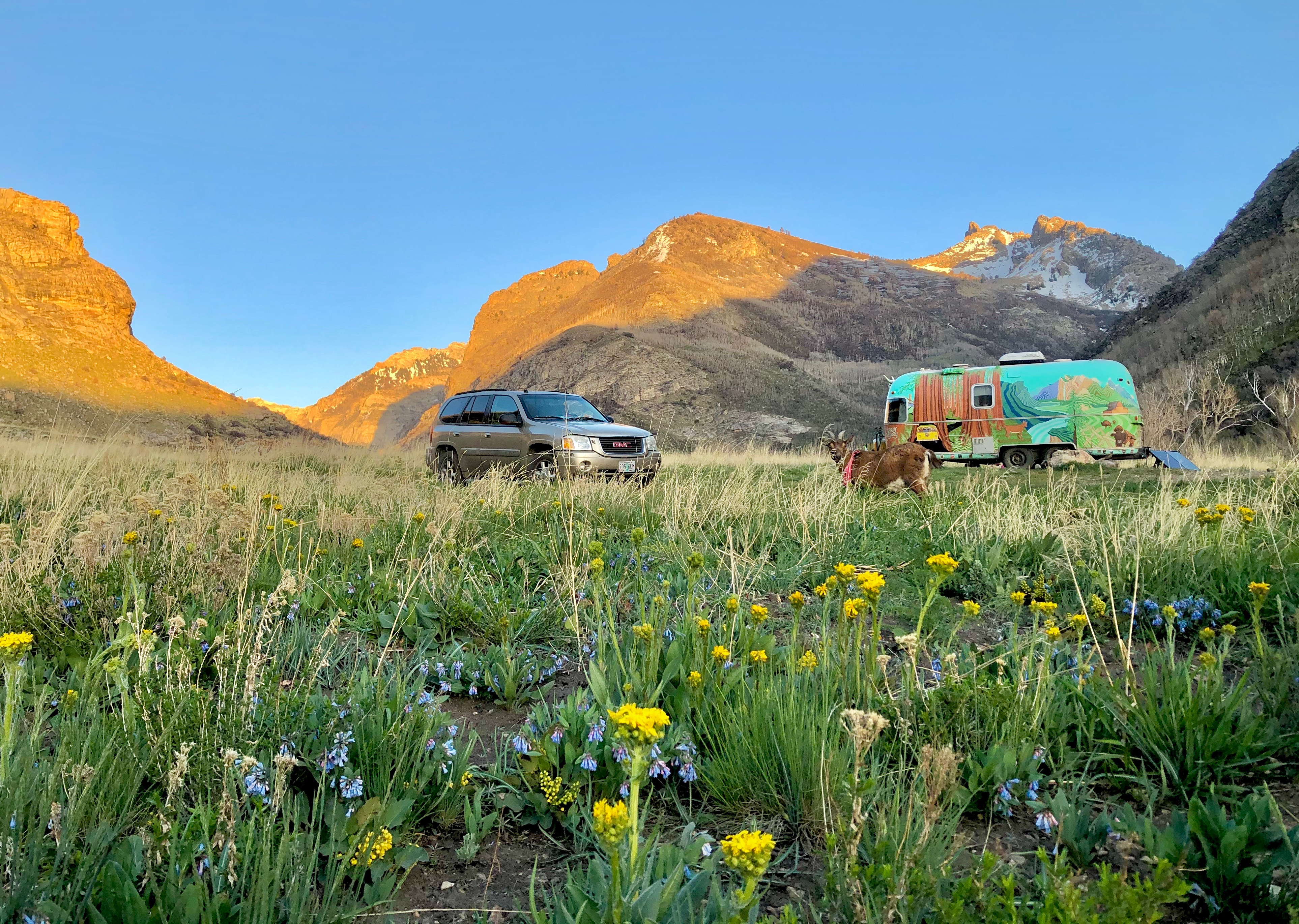 Truck and travel trailer parked in a meadow