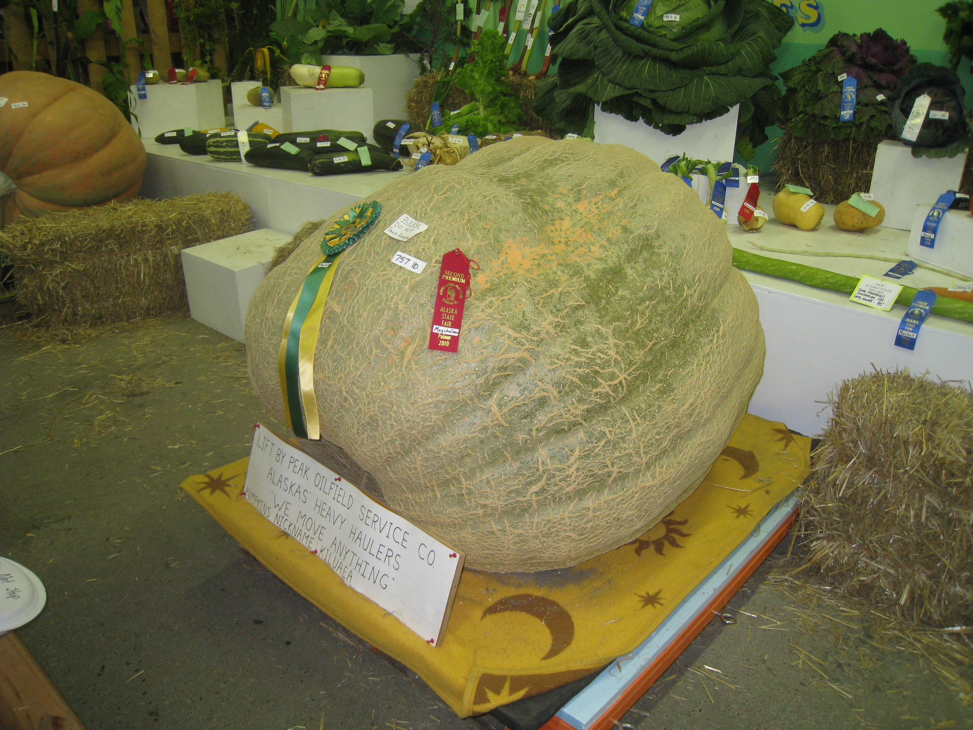 Giant melon on display