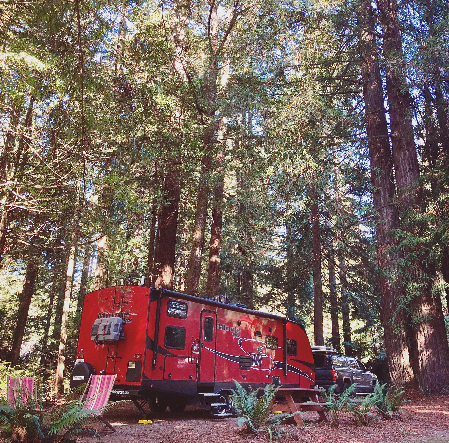 Red trailer camping among redwood trees.