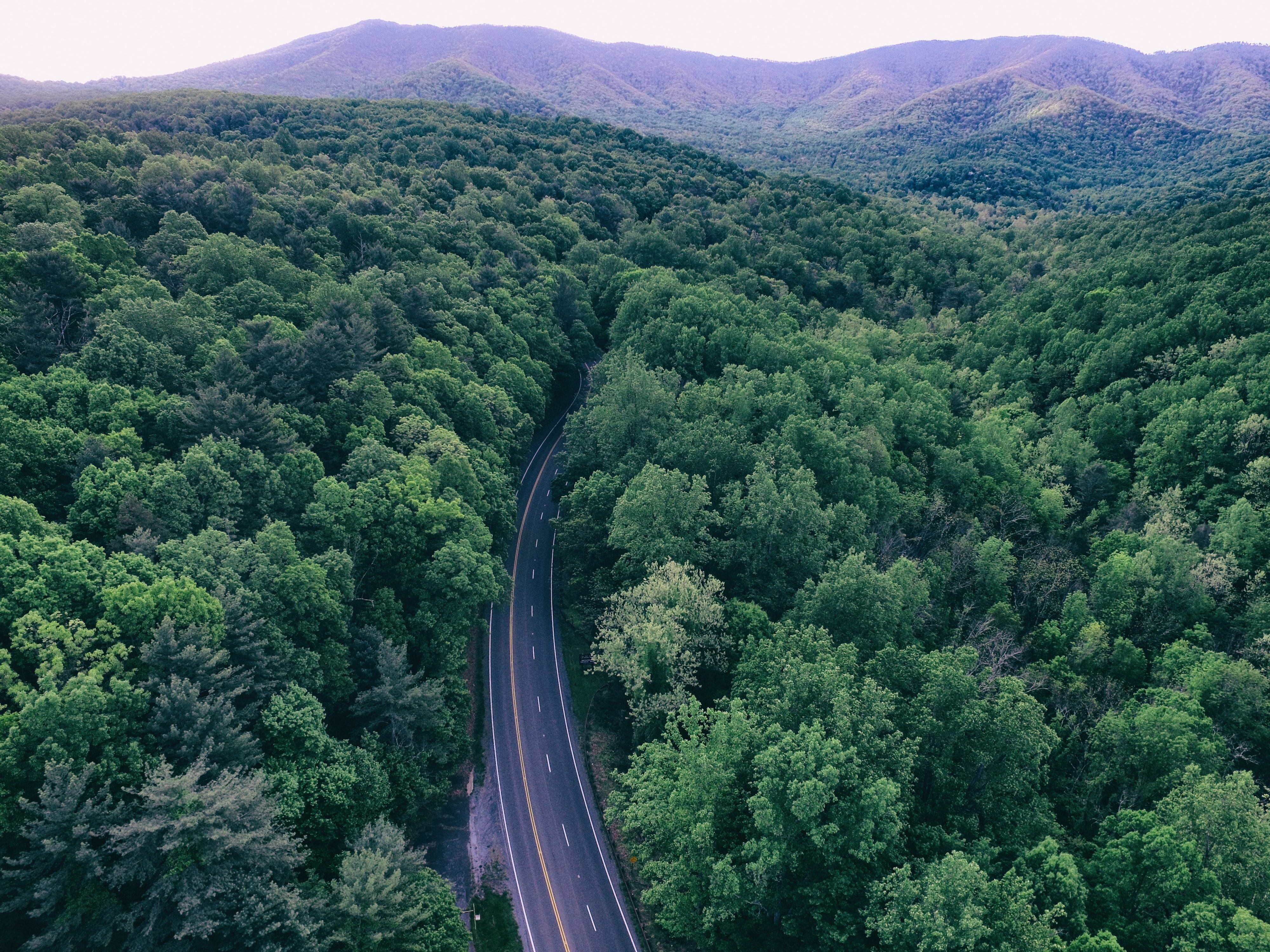 Aerial view of highway through dense green trees in Virginia