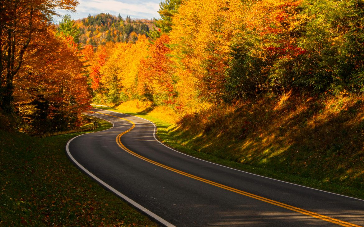 Windy road in the Smoky Mountains with fall colored trees
