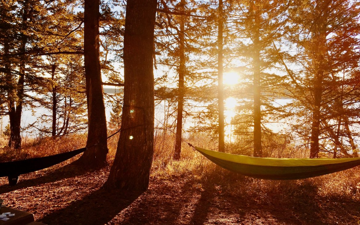 Hammock in Grand Teton National Park among forest with lake in background