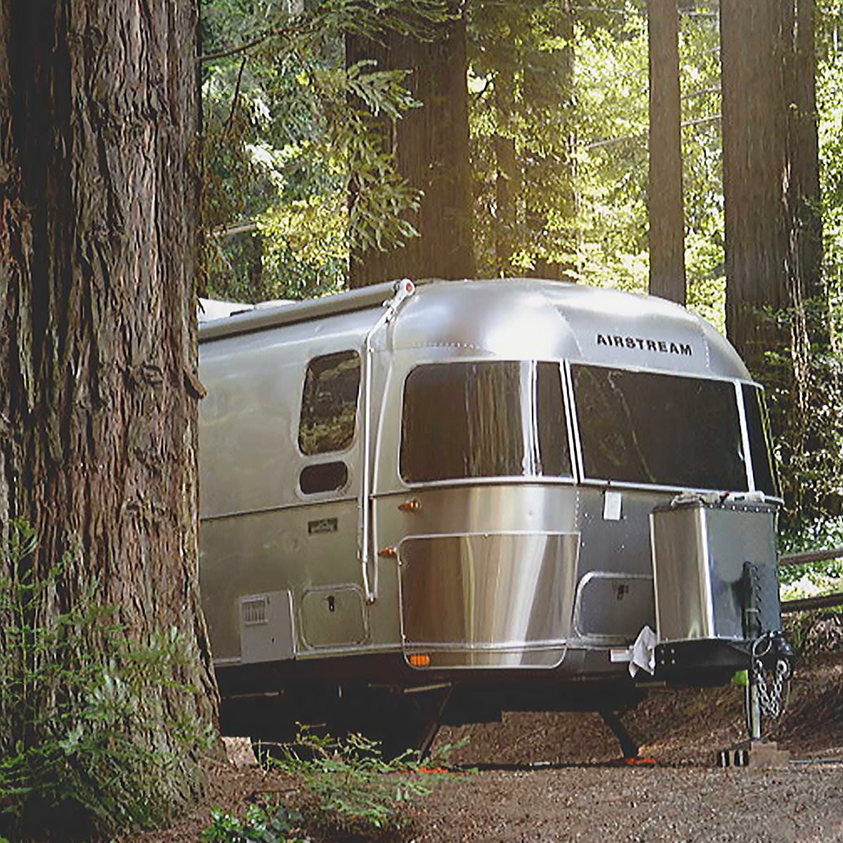 An Airstream trailer parked in the woods.