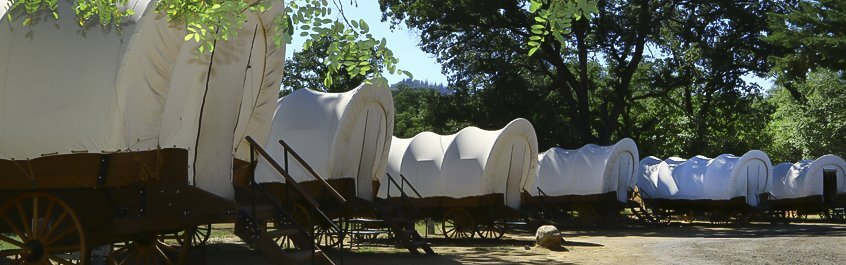 A row of conestoga wagons.