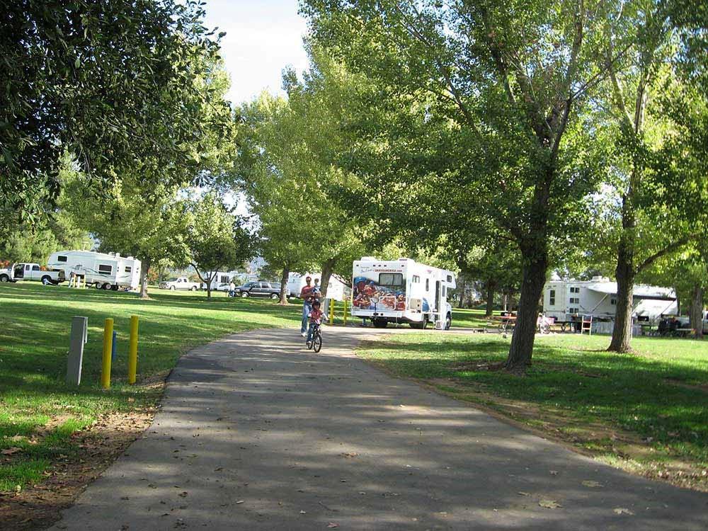 RVs camped under shady trees.