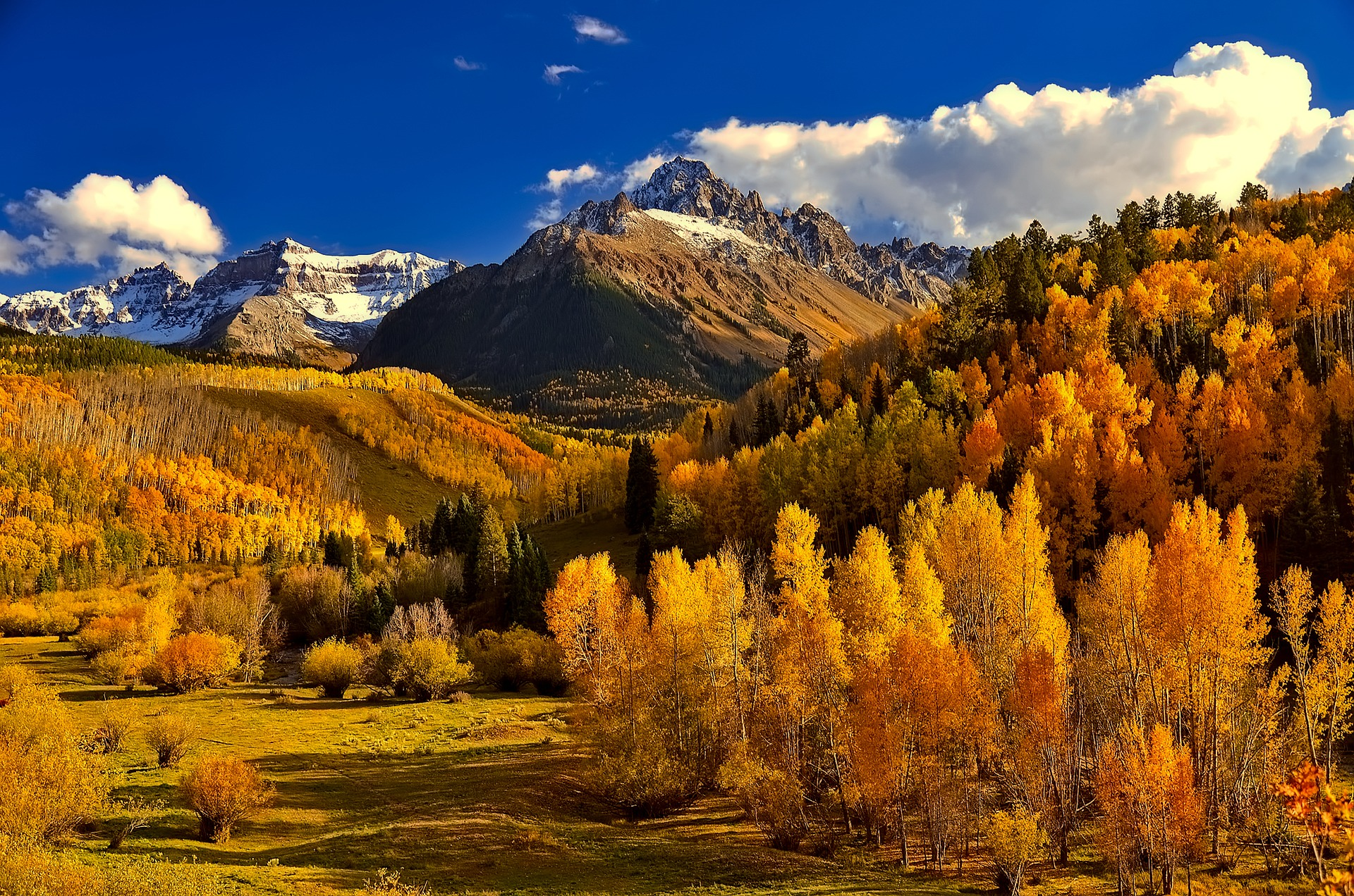 Trees growing on a mountain slope turn gold and crimson.