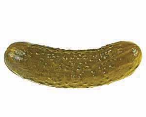 Juicy green pickle