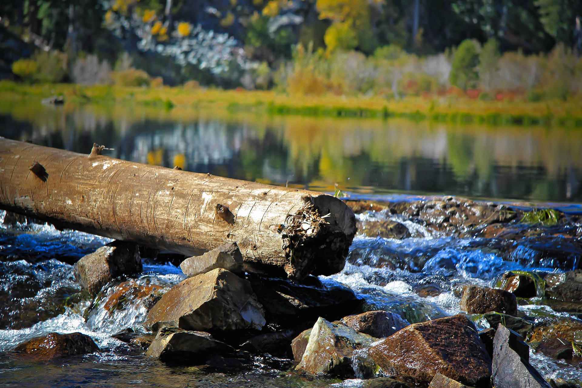 Water drains through sharp rocks with log.