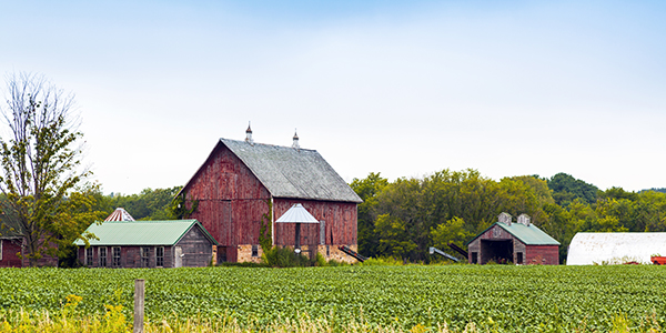 Red barn on field of green crops