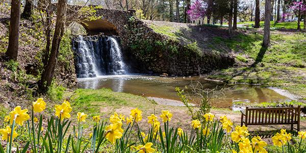 Waterfall bridge in Reynolda Gardens