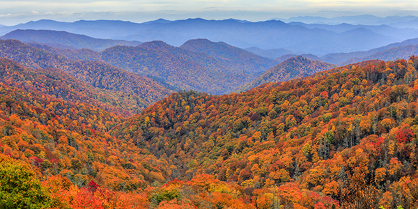 Autumn colors in Great Smoky Mountains