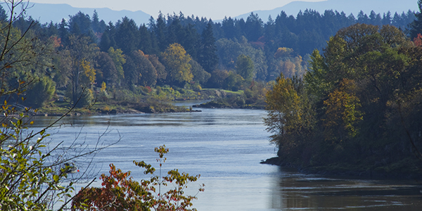 The Willamette River with fall colors