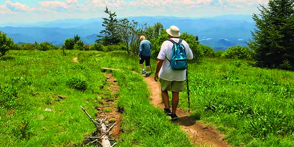 A pair of hikers navigate a thin trail.
