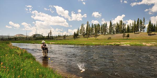 Man fishing in river with something splashing in water