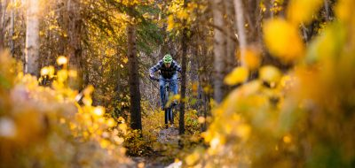 Man riding through autumn-colors.