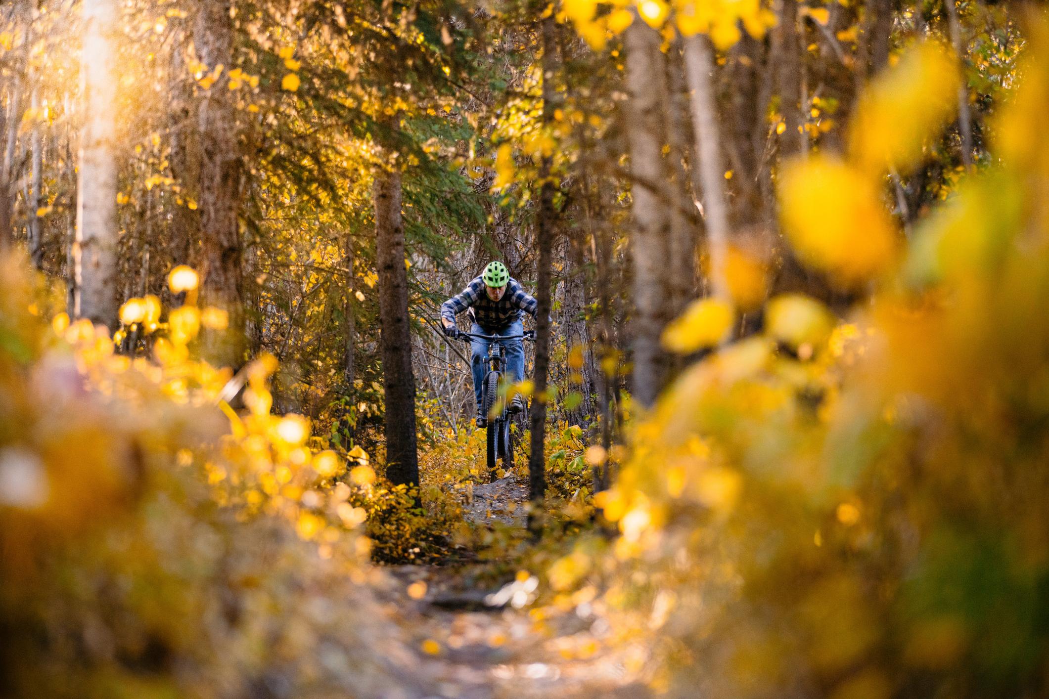 Man riding through autumn-colors.