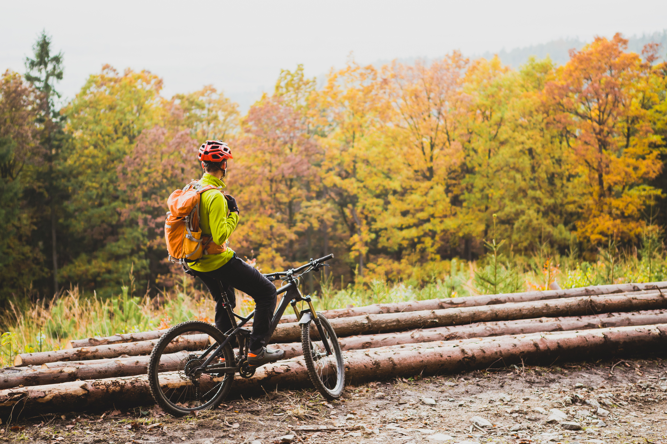Man sitting on bike and gazing out at fall-colored trees.