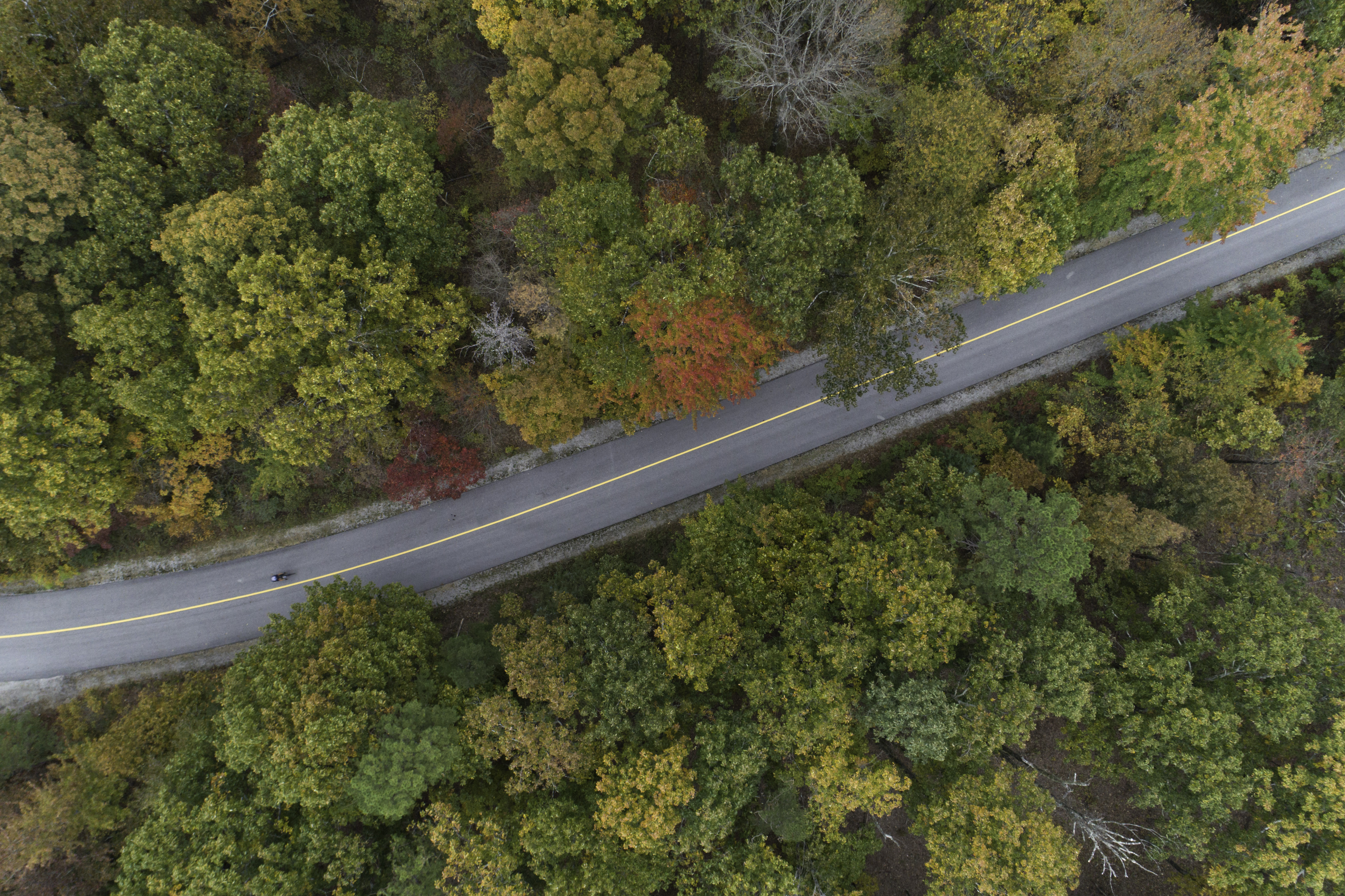 Aerial shot of lone cyclist on two-lane road