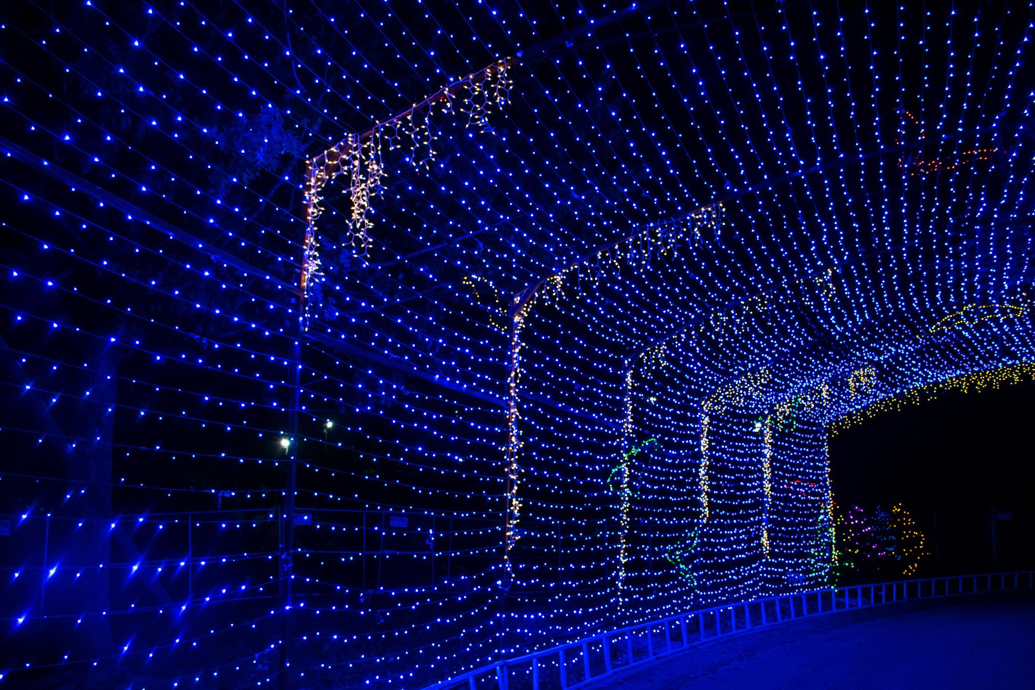 Tunnel of blue lights