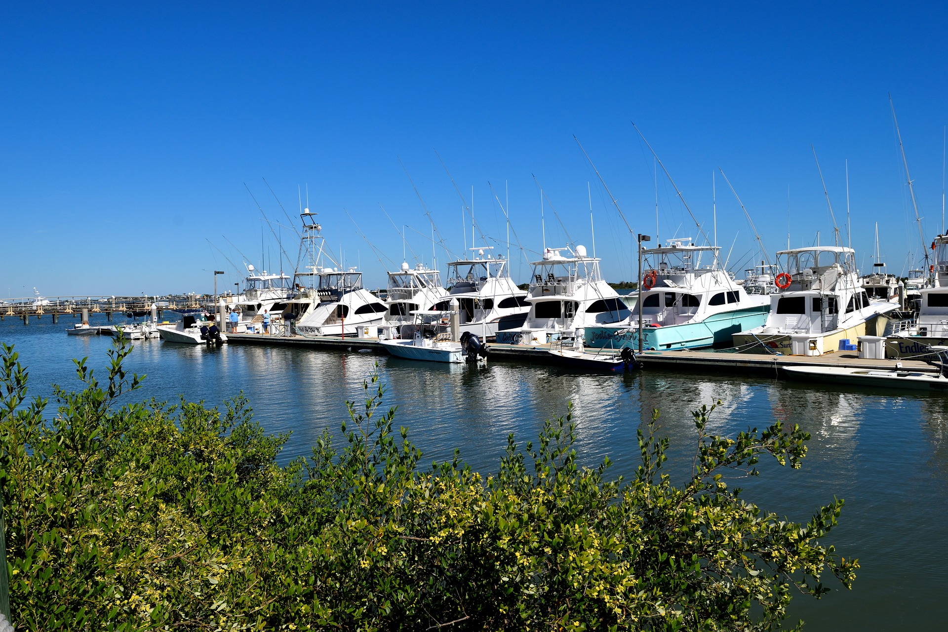 Florida Marina lined with boats
