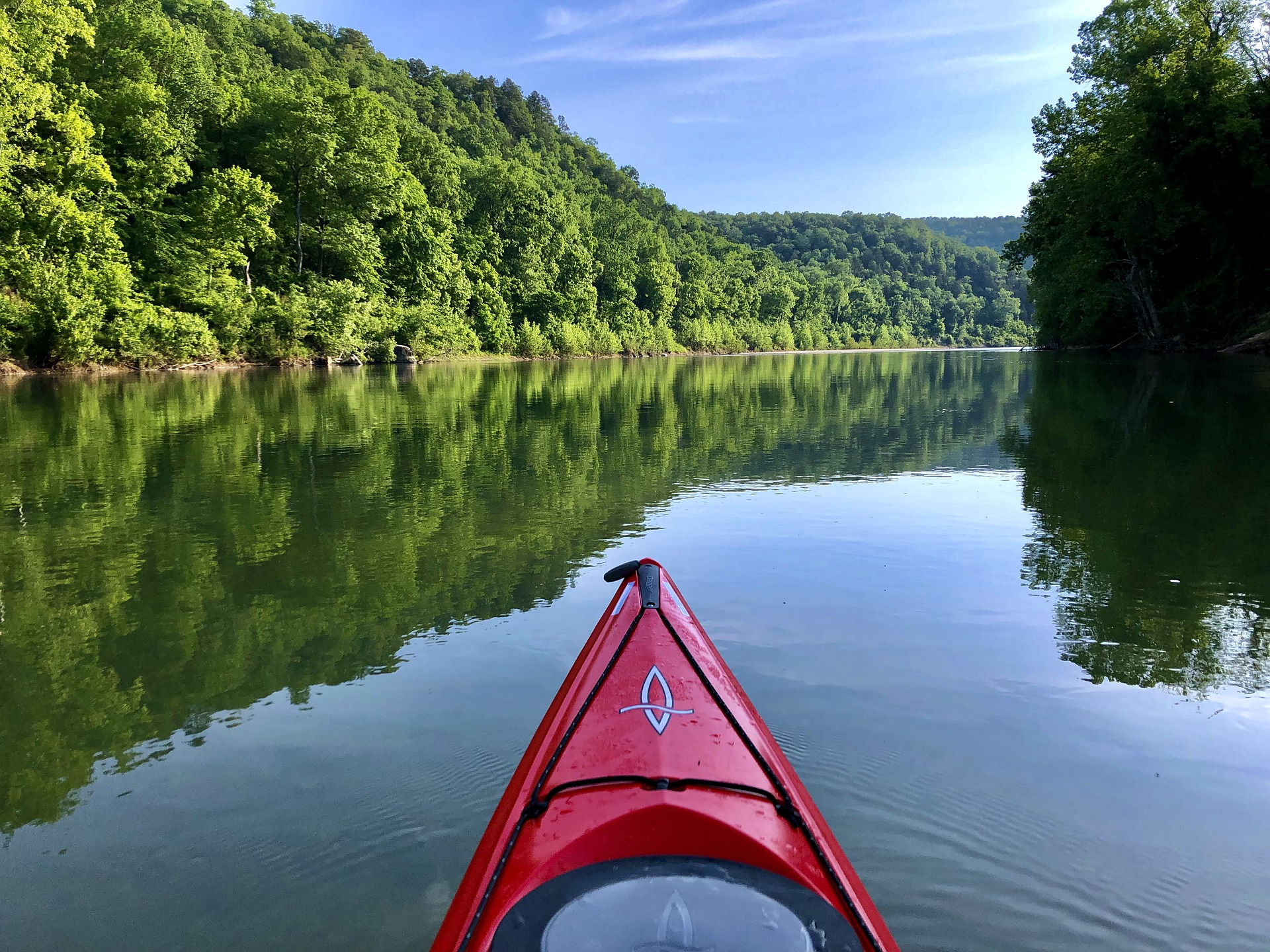 Kayaking slicing through tranquil lake fringed by thick forest.