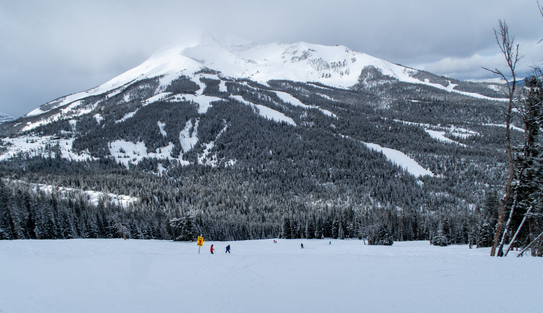 Mountain with ski trails running down the side
