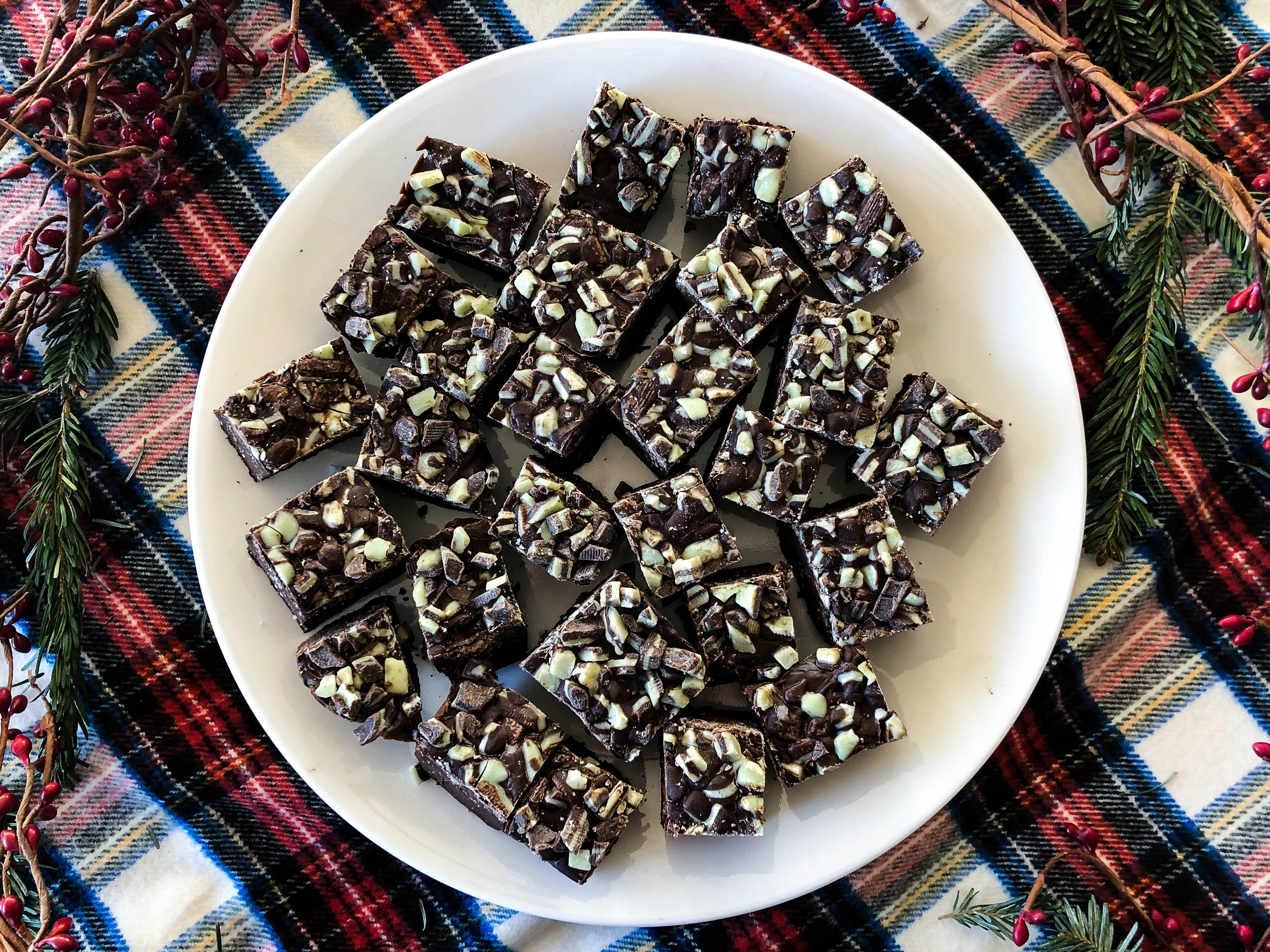 Chocolate fudge squares in a white plate