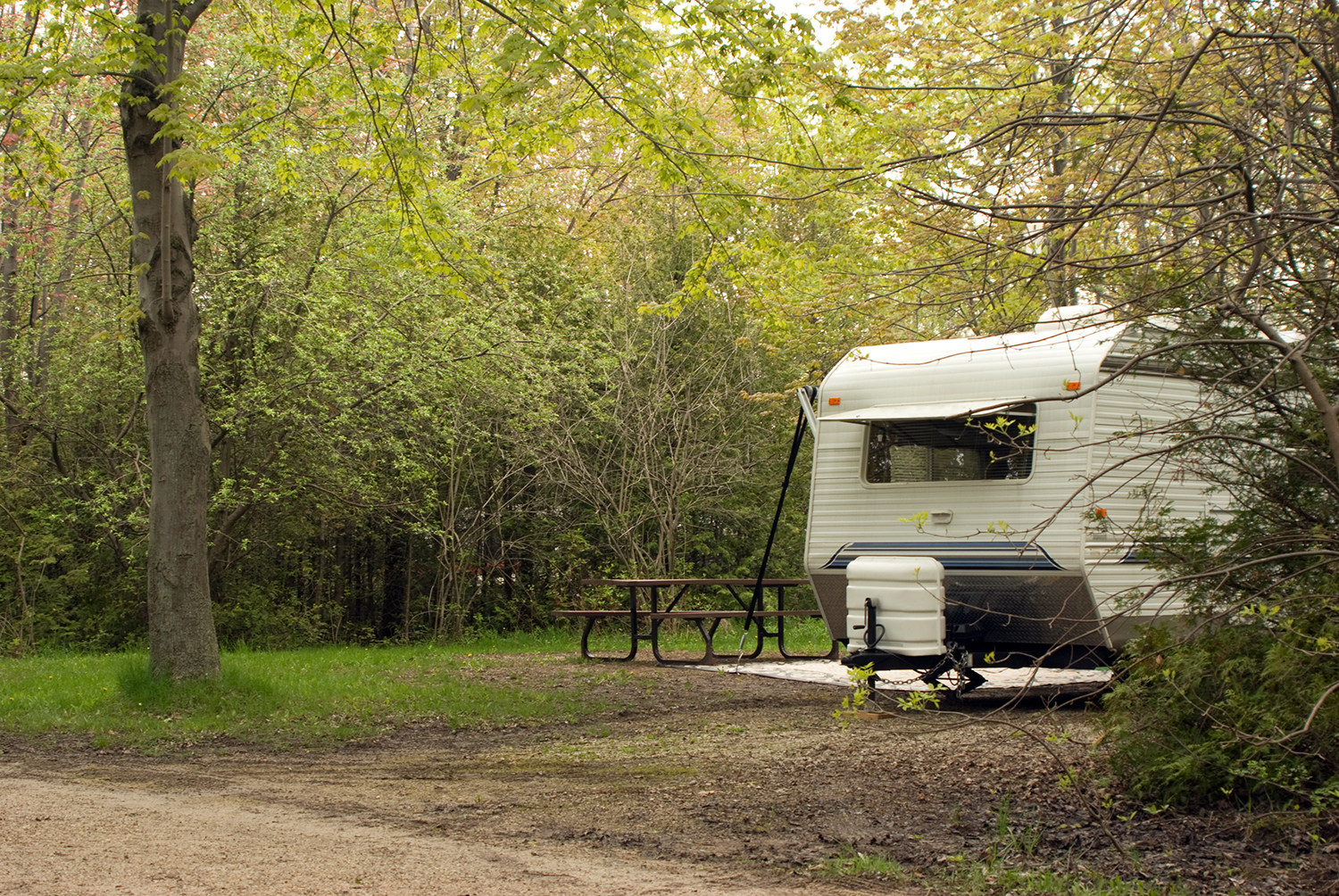 A travel trailer camping under green trees