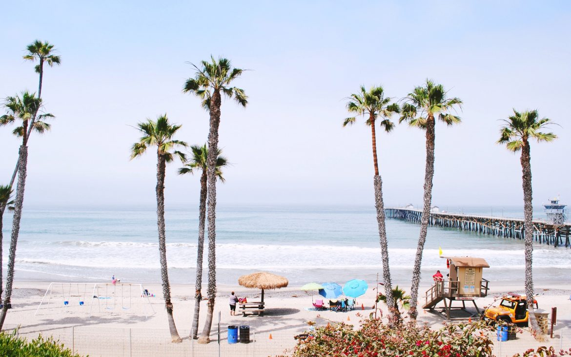 San Clemente Pier with palm tree clusters and lifeguard tower