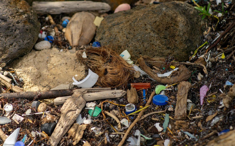 Waste on a paradise beach.