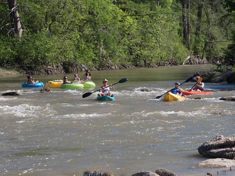 Kayakers navigate gentle rapids on a river.